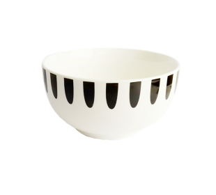 FLY-bol 55cl raye noir/blanc