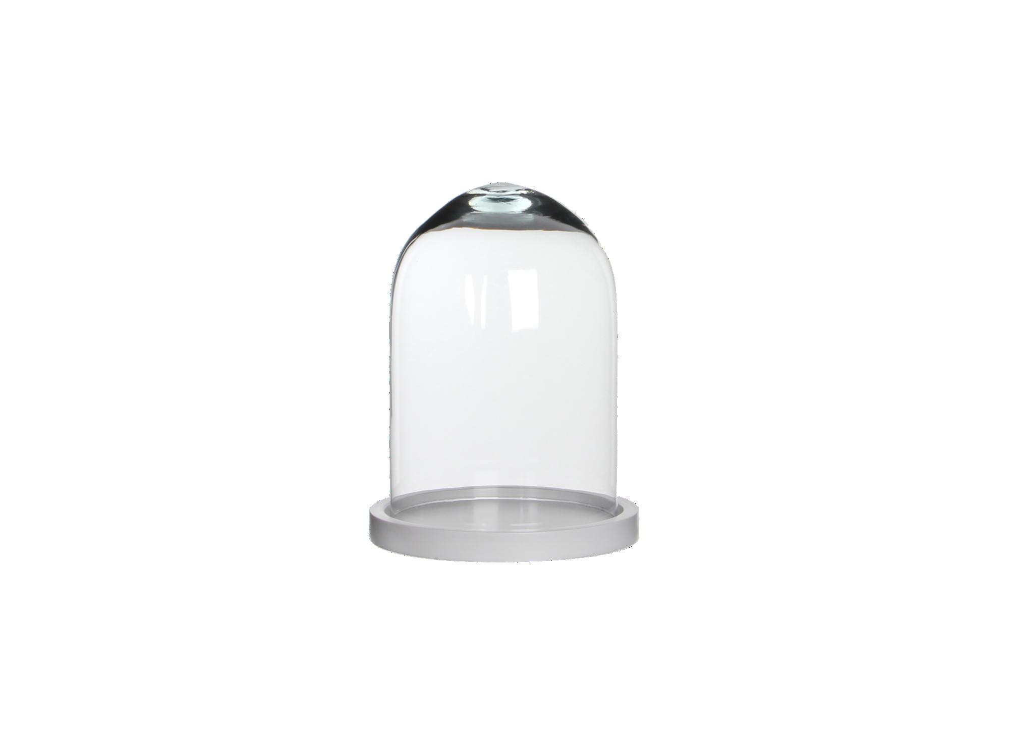 cloche h23cm verre transparent fly. Black Bedroom Furniture Sets. Home Design Ideas