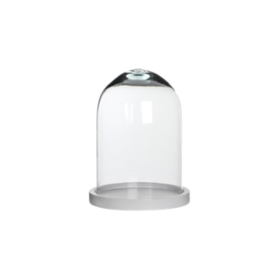 FLY-cloche h23cm verre transparent