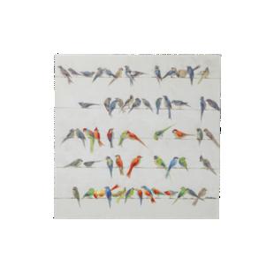 FLY-image laminee 100x100cm