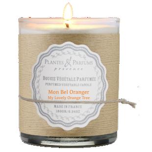 FLY-bougie oranger