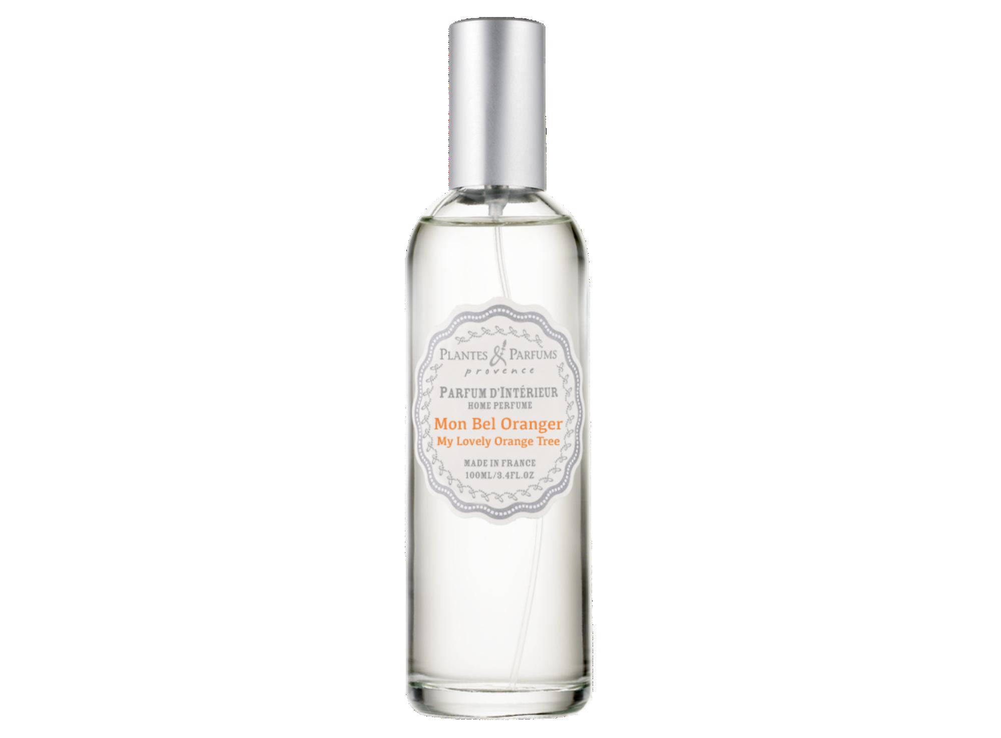 Parfum d ambiance 100ml orange r
