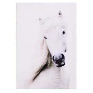 FLY-toile imprimee 45x65 cm cheval blanc/noir